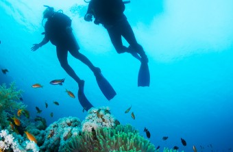 Discover Scuba Diving in Rethymno